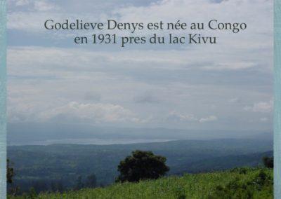 GDS-Historique-01